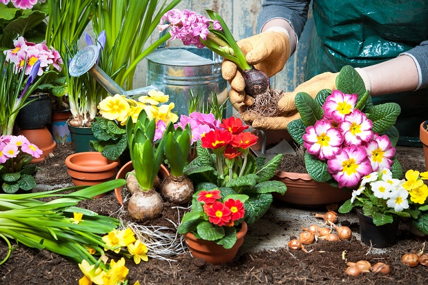 Twenty (20) Springtime Stress Busting Activities for Caregivers During the Pandemic